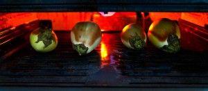 Spicy Eggplant and Tomato Mash - Baingan Bharta