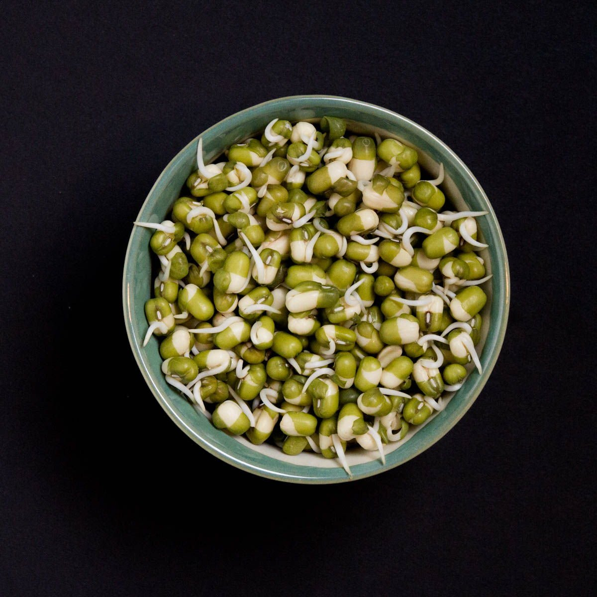 how to cook sprouted mung beans