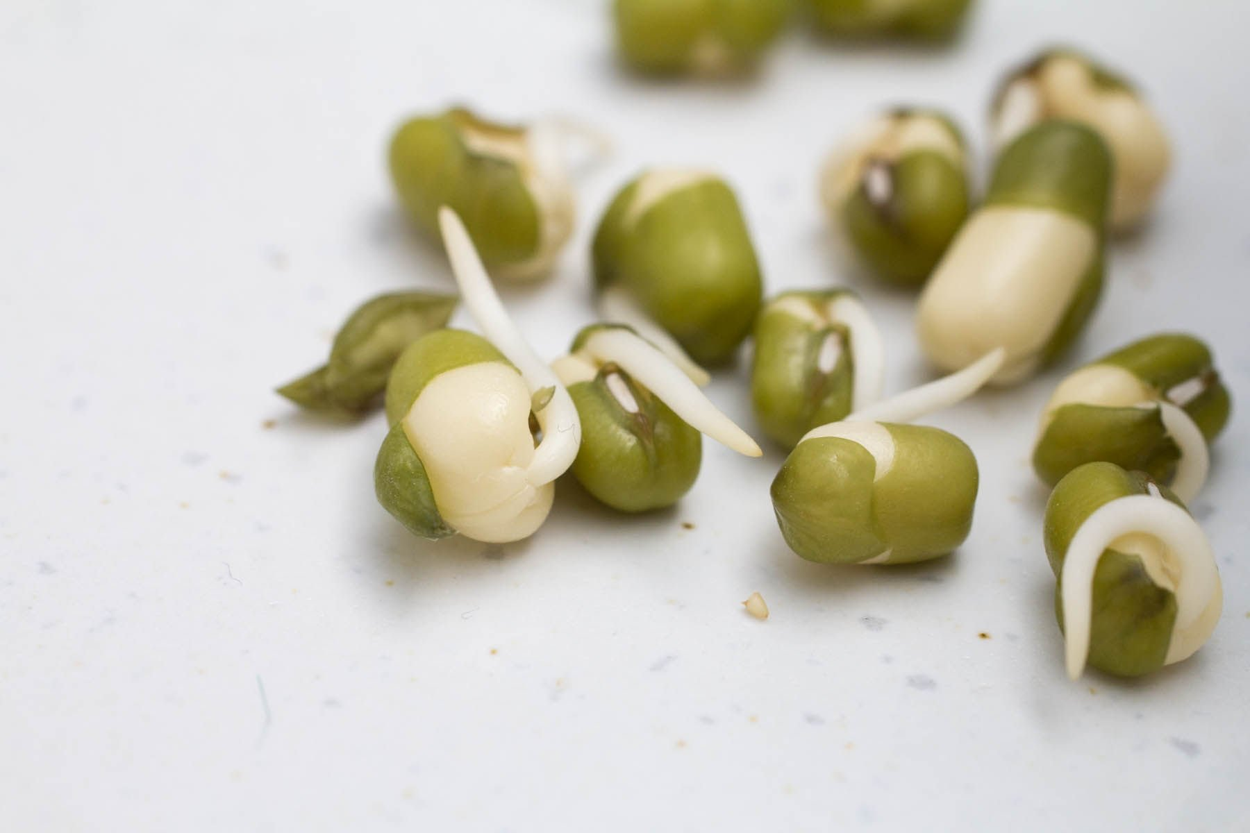 A Healthy Snack And Meal Sprouted Mung Beans And A Simple