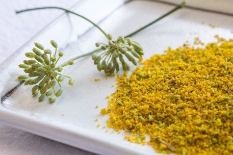 Fennel Pollen by Indiaphile.info