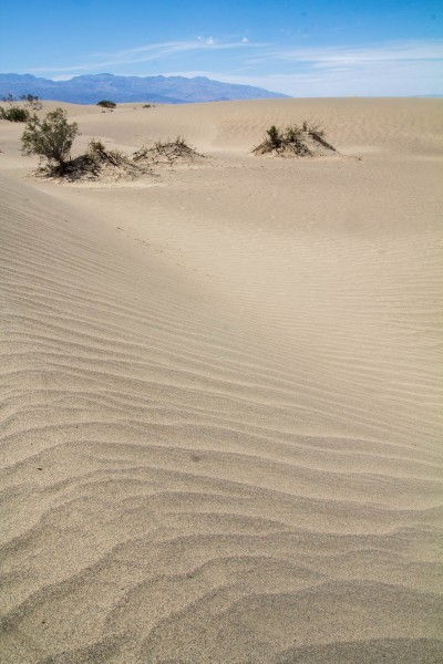 Mesquite Flat Sand Dunes, Death Valley, CA